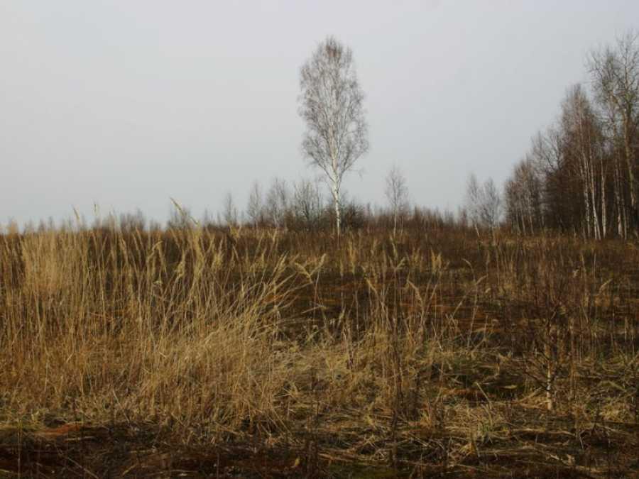 земельный участок с обременением