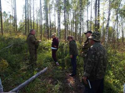 В Таштыпском районе выращивают новый лес